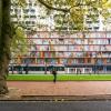 Rotterdam ontkent conclusies 'somber' rapport