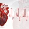 Cardiologen maken te weinig gebruik van risicoscores